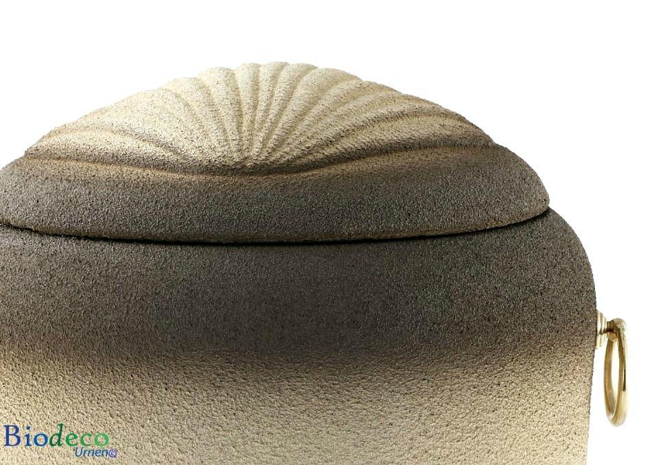 Detail van de biologisch afbreekbare zee-urn Jacobsschelp, gedocoreerd met een Jacobsschelp in het deksel
