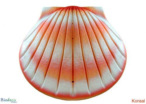 De biologisch afbreekbare zee-urn Schelp, geairbrusht in de kleur koraal, voor asbijzetting in het water