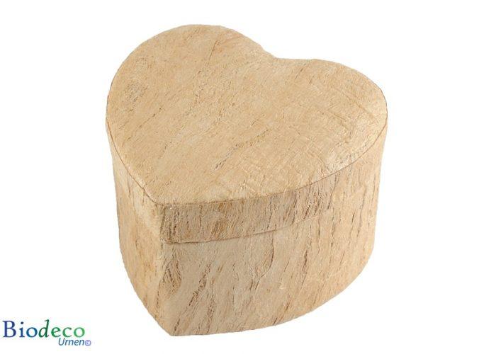 De biologisch afbreekbare mini Hart-urn Houtstructuur, gemaakt van de schors van de moerbeiboom. voor een asbijzetting in de aarde