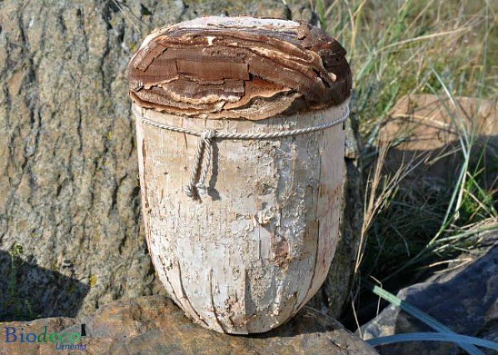 Biologisch afbreekbare Berkenschors-urn, handmatig afgewerkt met de schors van de Berk voor een asbijzetting in de aarde