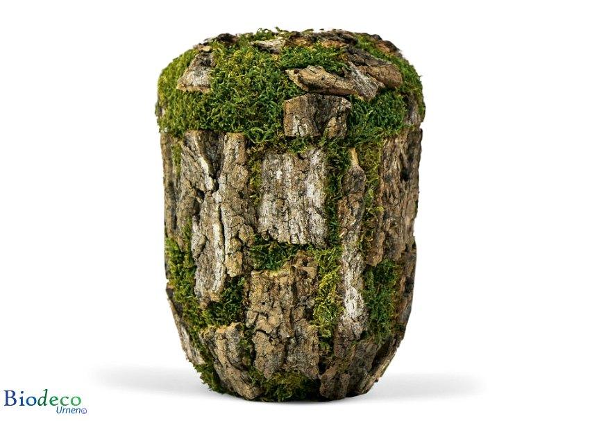 Biologisch afbreekbare urn Kurkeikenschors-urn, handmatig afgewerkt met de schors van de Kurkeik voor een asbijzetting in de aarde